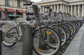 Bicycles in Paris — Stock Photo