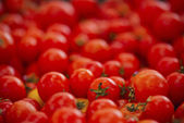 Organically grown red cherry tomatoes background. Shallow DOF — Stock fotografie