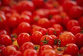 Organically grown red cherry tomatoes background — Stock Photo