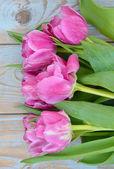 Gros plan du bouquet de roses tulipes pourpres sur vieux gris bleu nouée de bois — Photo