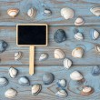 Empty black chalk board on a old knotted used wooden background with sea beach shells for a beach style mood board layout — Stock Photo #71592701