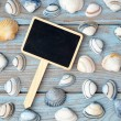 Empty black chalk board on a old knotted used wooden background with sea beach shells for a beach style mood board layout — Stock Photo #71593459
