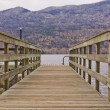 Weathered wooden boat ramp — Stock Photo #70661319