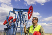 Summer in field of oil pumps. — Stock Photo