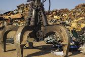 Kaktus Chyť kbelík na smetiště hromadu rozmazané pozadí. — Stock fotografie