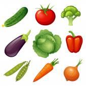 Set of fresh vegetables — Stock Vector