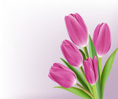 Realistic Colorful Tulips in Isolated Background — Stock Vector