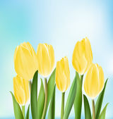 Realistic Colorful Tulips in Isolated Background — Vector de stock