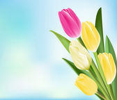 Realistic Colorful Tulips in Isolated Background — ストックベクタ