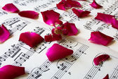 Love Song Concept, Red Rose Petals on Sheet Music — Stock Photo