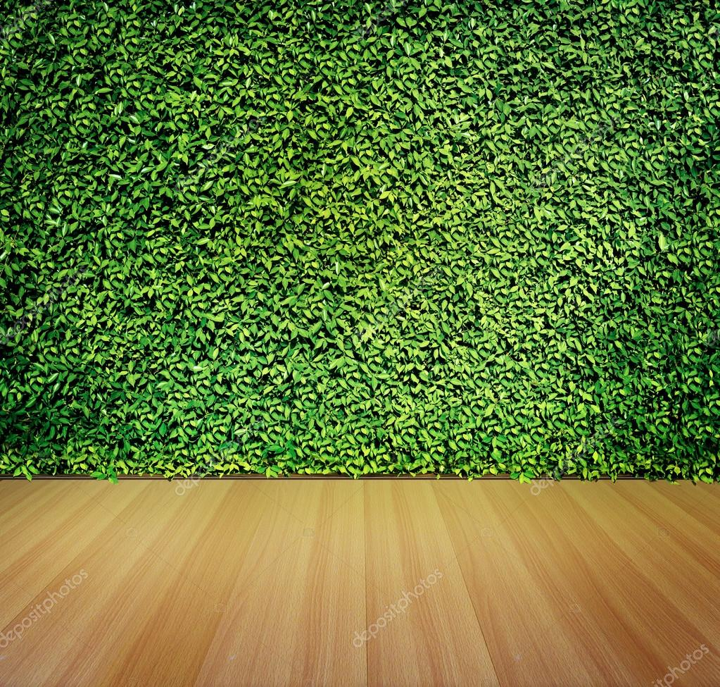 Pared y piso de madera para el fondo de hojas de color for Color verde grisaceo para paredes