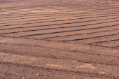 Land to cultivate — Foto de Stock
