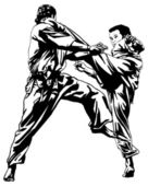 Karate fighting — Vettoriale Stock
