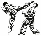 Karate fighting — Stockvector