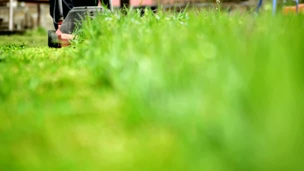 Siega de la hierba — Vídeo de stock