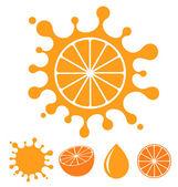 Orange. Fruit — Stock Vector