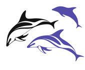 Delphin — Stockvektor