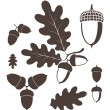 Oak. Acorn — Stock Vector #53829685