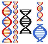 DNA. Set — Stock Vector