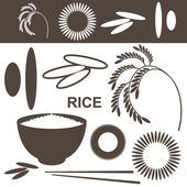 Rice. Set — Stock Vector