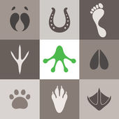 Set of paw print — Stock Vector