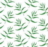 Eucalyptus leaves — Stock Vector