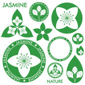 Jasmine icons set — Stock Vector
