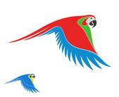 Macaw parrots — Stock Vector