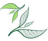 Tea leaves — Stock Vector