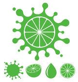 Lemon or Lime — Stock Vector