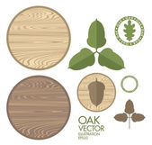 Oak Acorns and  Wood — Stockvektor