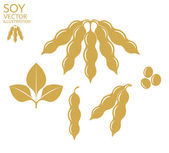 Soybean icons set — Stock Vector