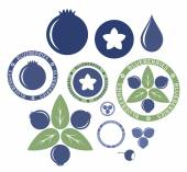 Blueberry icons Set — Stock Vector