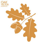 Flat Oak Branch — Stock Vector