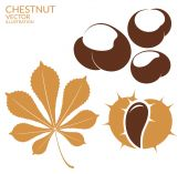 Chestnut flat icons — Stock Vector