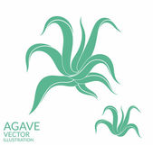 Agave icons set — Stock Vector