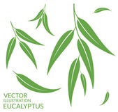 Eucalyptus flat icons — Stock Vector