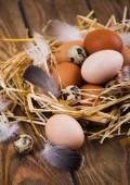 Eggs — Стоковое фото