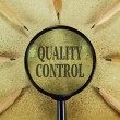 Quality control — Stock Photo #70928365