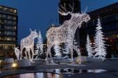 Christmas moose made of light — Stock Photo