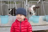 Child to the farm — Stock Photo