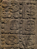 Tall, carved hieroglyphs on standing stones in the Mayan ruins at Quirigua, Guatemala. The stones are unique in the Mayan world. — Stock Photo