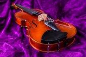 Violin on violet. — Stock fotografie