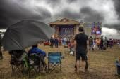 Music festival wild Mint. — Stock Photo
