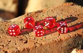 Rote würfel — Stockfoto