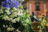 White lilies and irises — ストック写真
