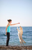 Training dogs. Young woman with her dog at the beach. — Stock Photo