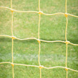 Goal net close up on green background — Stock Photo #57354767