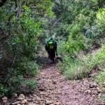 Walking into the wild — Stock Photo #67926051