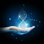 Dna helix on hand — Stock Photo